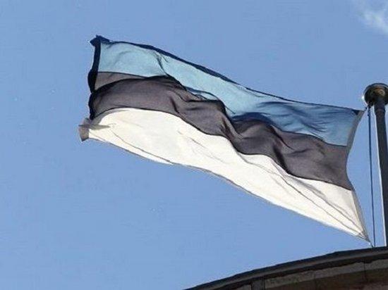 Эстония купила беспилотники для охраны границы с РФ