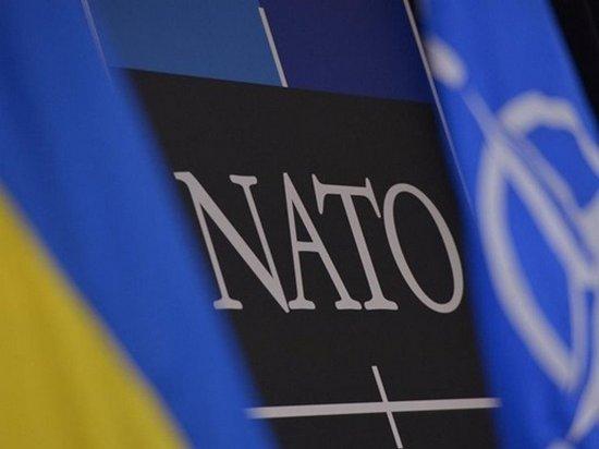 Украина на 90% адаптировала ВСУ к стандартам НАТО