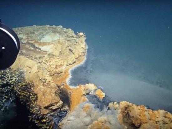 Ученые обнаружили ядовитое озеро в Мексиканском заливе (видео)
