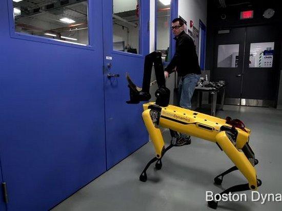 Роботов снова