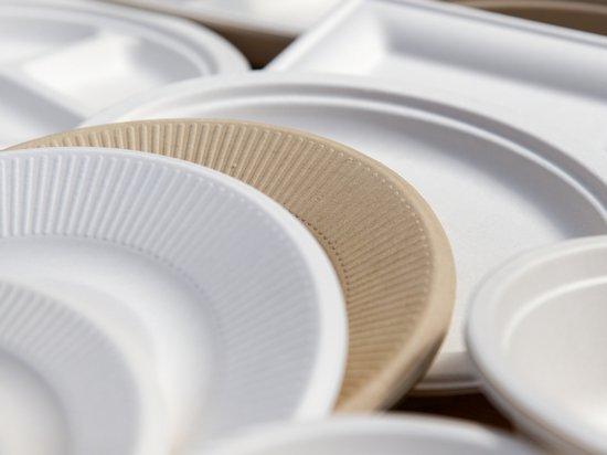 Бумажные одноразовые тарелки — практично и эстетично
