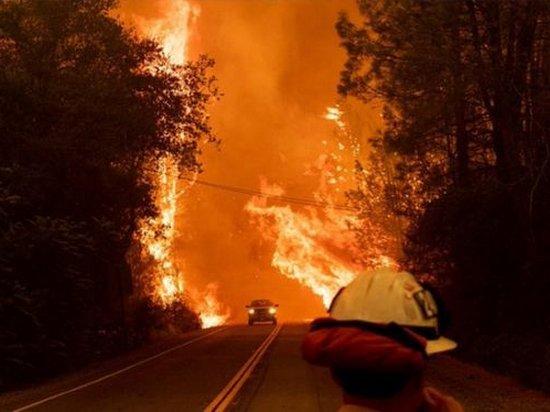Из-за пожаров в Калифорнии эвакуировали 37 тысяч человек