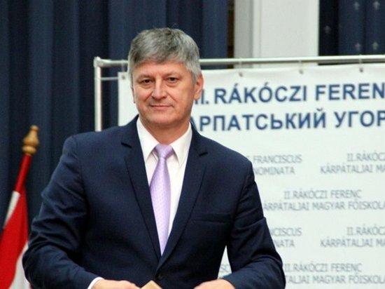 В Венгрии рассказали, как помогают Украине