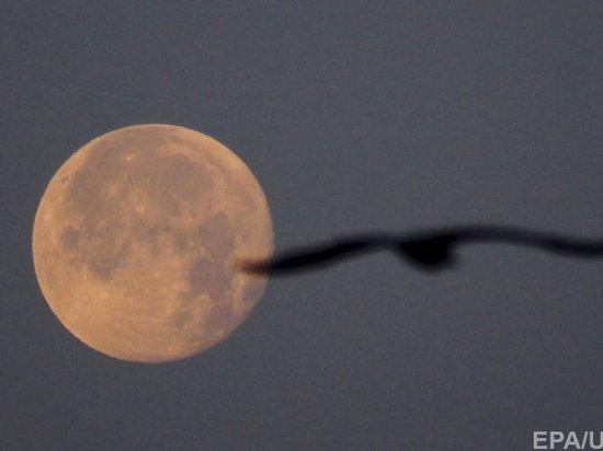 США анонсировали отправку экипажа на орбиту Луны