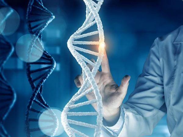 Как получить генетический паспорт: сроки и стоимость
