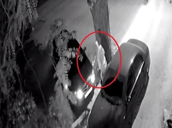 В Днепре 61-летний пенсионер повредил 40 авто (видео)