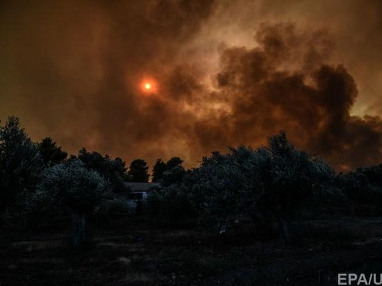 В Греции начался масштабный лесной пожар (видео)