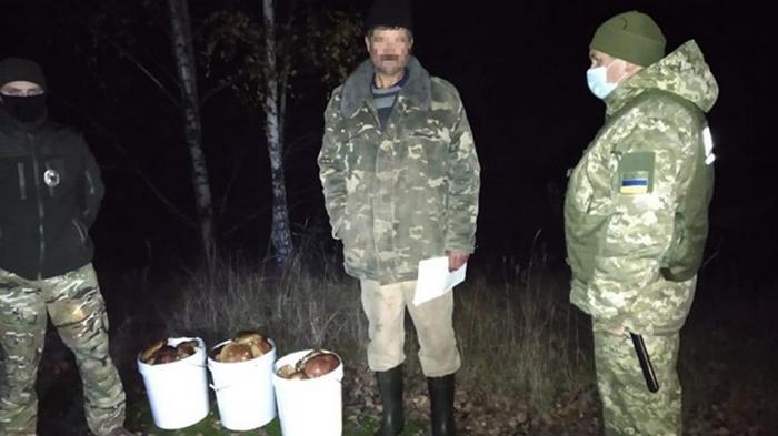 Пограничники изъяли 40 кг чернобыльских грибов