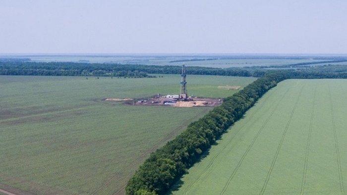 Кабмин отдал Нафтогазу крупное месторождение