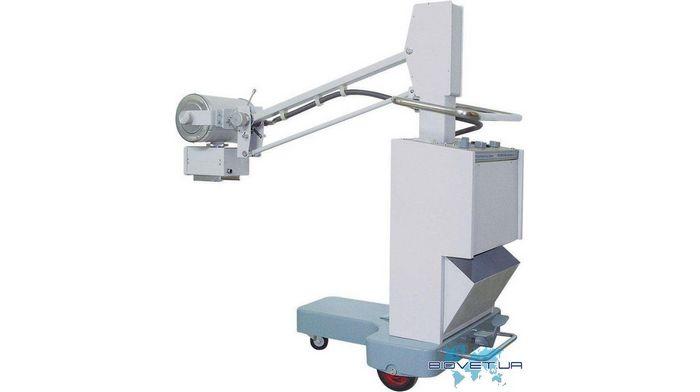 Рентген аппараты для животных: их особенности