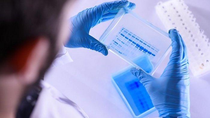 Как COVID-19 и Эбола: ученые зафиксировали новую смертельную болезнь