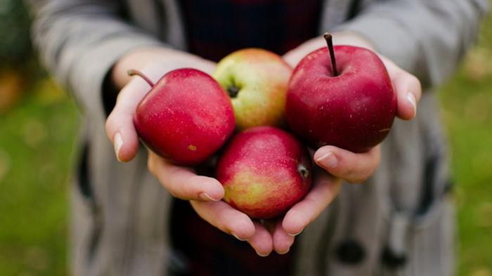 В Украине подорожают яблоки - эксперты