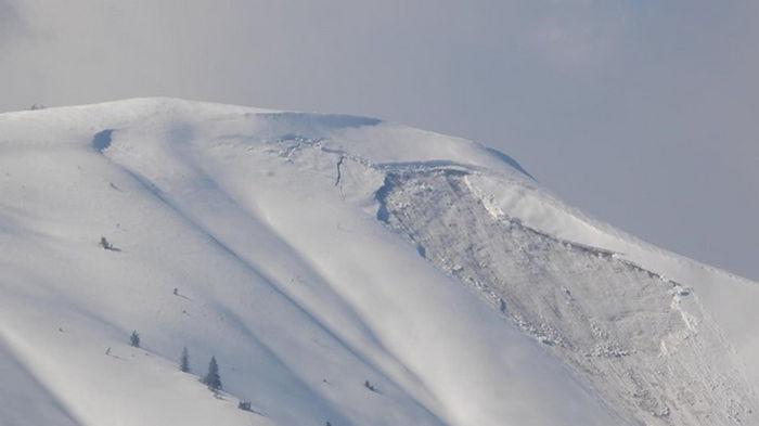В Карпатах сошла лавина: туристов просят не идти в горы