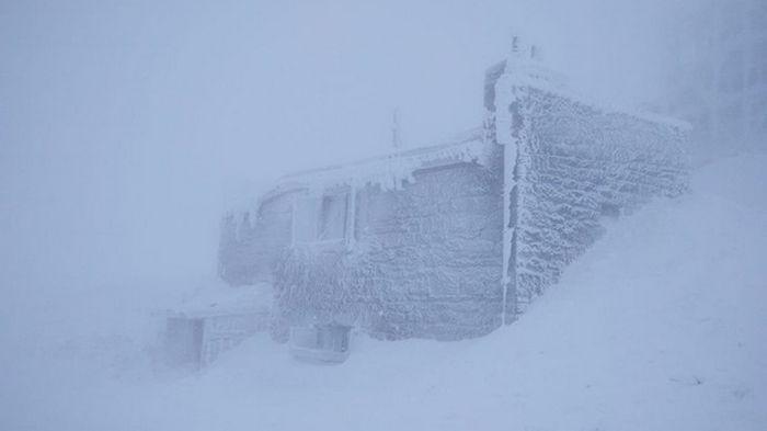 В Карпатах снегопад: видимости почти нет