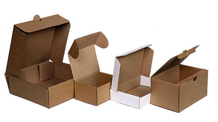 Самосборные коробки: секреты популярности раскрывает «ГофрокартонЮа»
