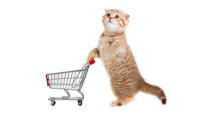 Для чего необходимо приобретать корм для животных в онлайн зоомагазине оптом?