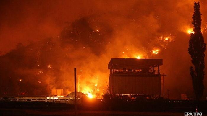 В результате лесных пожаров в Алжире погибли 42 человека