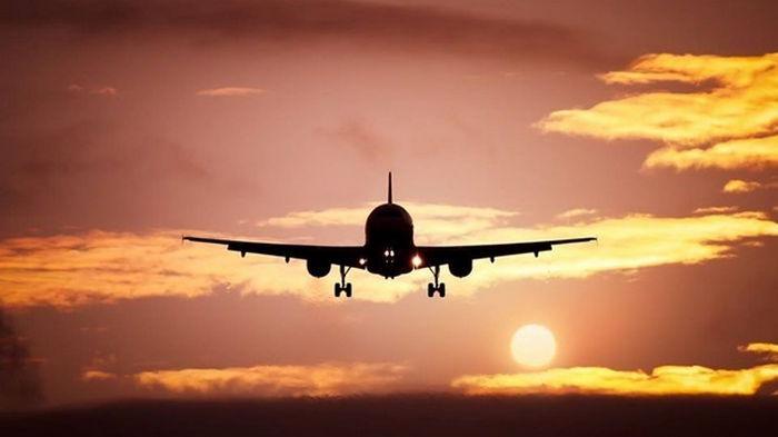 Число внутренних авиарейсов в Украине превысило докарантинные показатели